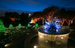 gardenlightsjpg1462157081.jpg