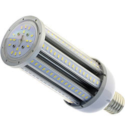 Maize High Lumen EX Series